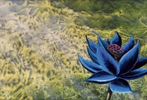 with-a-black-lotus-sold-at-500k-magic-the-gathering-hits-a-new-level